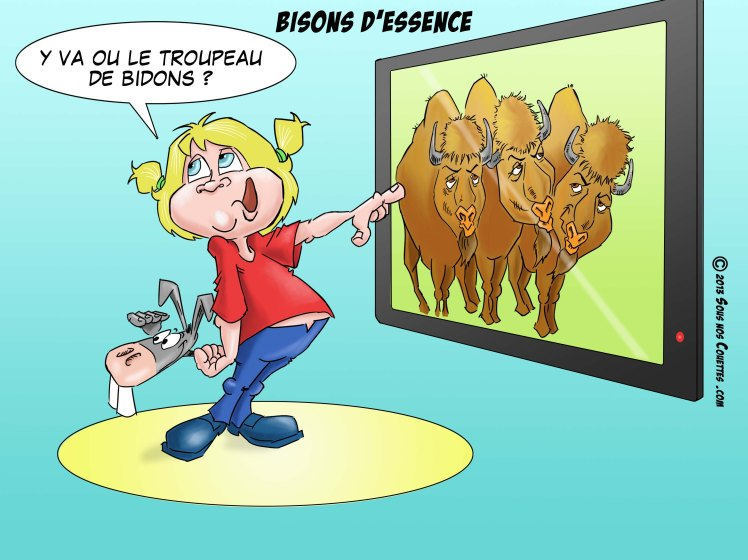 bisons d'essence